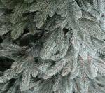 Элитная искусственная литая елка «Platinum» 2 метра