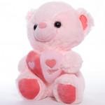 Мягкая игрушка мишка Томи (25х19) - 4 вида
